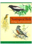 Neotropical Birds