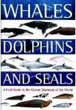 Whales Dolphin the World